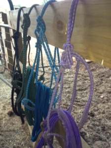Photo - 4 Rope Halters for Horses
