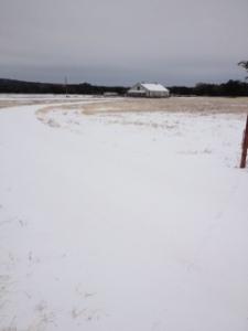 Barn photo - ice storm of 2013