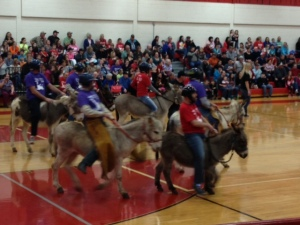 Donkey Basketball Photo - Donkeys head down the court