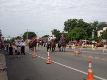 Parade Photo - Horses