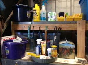 Farmtastic Photo - Organized tack room shelves