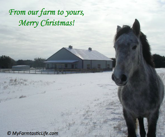 Merry Christmas from MyFarmtasticLife