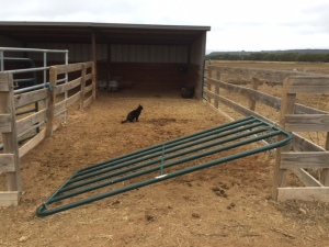 Farm Photo - Busted gate