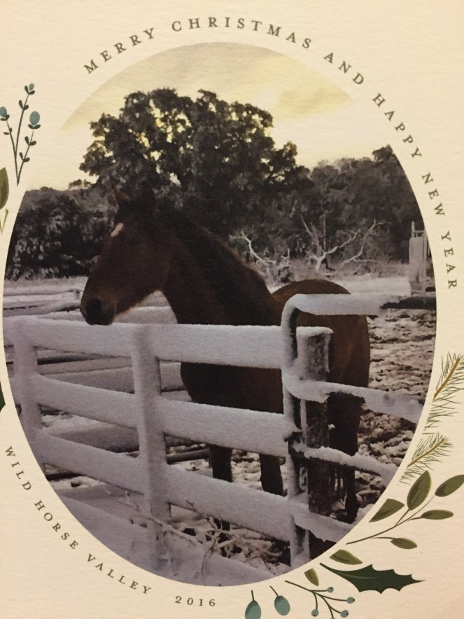 2016 My Farmtastic Life Merry Christmas card