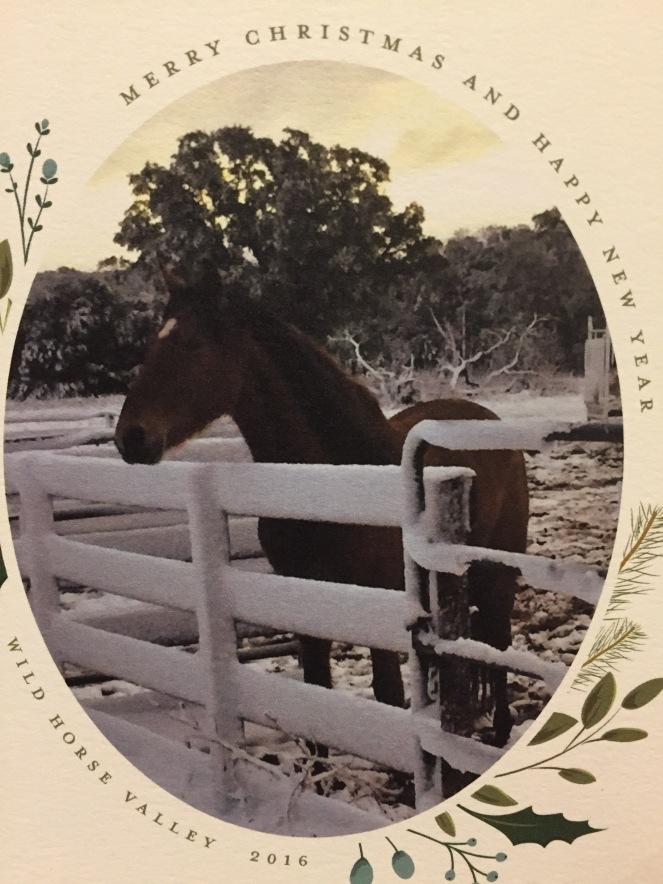 2016 My Farmtastic Life Merry Christmas card