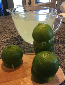 My Farmtastic Life Recipe - Limeade in progress